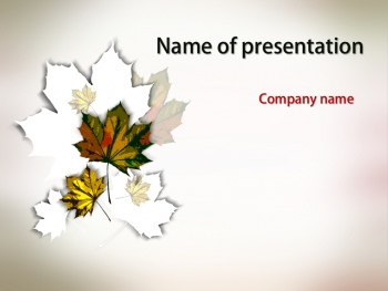 Maple Leaves powerpoint template