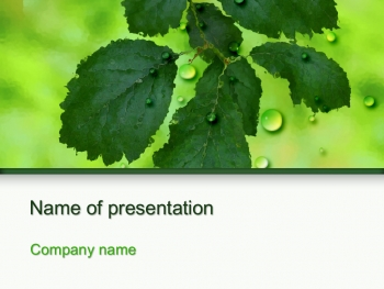 Green Leaves powerpoint template