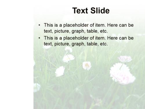 Summer Flowers powerpoint template