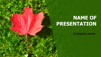 Maple Leaf PowerPoint theme